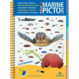 Marine PICTOLIFE Océan Indien et Mer Rouge